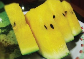 Yellow-Crunch-Watermelon-Seeds